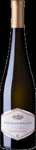 2019 Sauvignon DOC